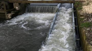 Newcourt Carrier – Fish Pass