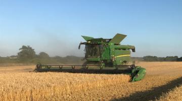 Start Of Harvest 2019