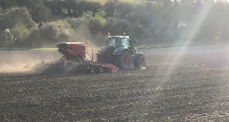 Spring Cultivation and Drilling
