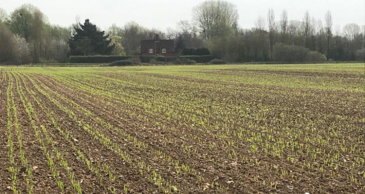 Farm starts Drilling